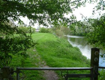 58 - View to Grimley fishery