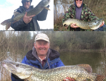 What's being caught here - 9, 14 & 16lb pike for Colin T and Spud. spring 2016